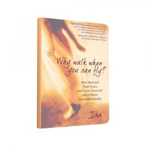 Isha Judd - Book Why Walk When You Can Fly