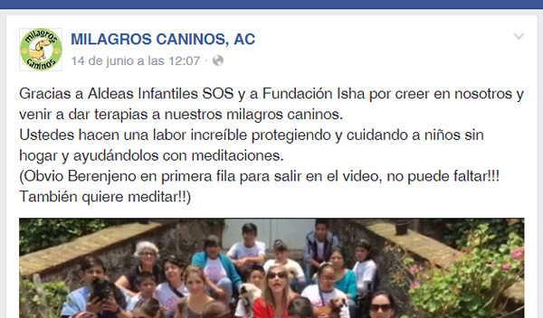 Fundación Isha México y Milagros Caninos de Ciudad de México